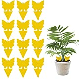Dwcom 12 Pack Sticky Fruit Fly and Fungus Gnat Trap Yellow Sticky Bug Insect Killer for Indoor and Outdoor