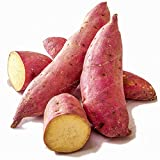 Generic Fresh 20 piezas de SEMILLAS de patata dulce para plantar rosa