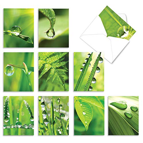 10 'Just Dew It' Assorted Note Cards with Envelopes 4 x 5.12 inch, All Occasion Blank Greeting Cards, Stationery Set for Weddings, Baby Showers, Sympathy, and Thank Yous M2015