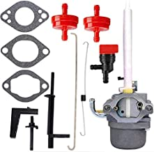 HOOAI 796122 Carburetor for Briggs & Stratton 794593 696737 793161 Ariens MTD Cub Cadet Snowblower Snowthrower Tractor Carburetor