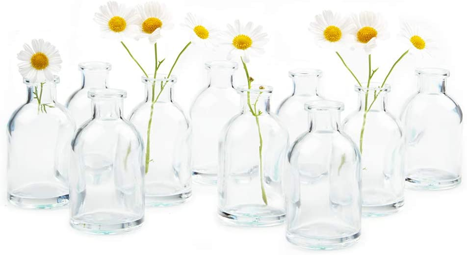 Chive 'Loft' Clear Glass Flower Vase Cute Beau Fashion — New color