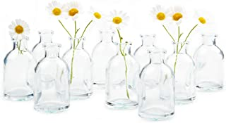 Chive - Loft, Set of 10 Clear Tall Bottle 1.75