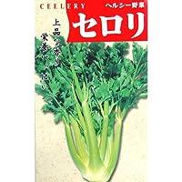 セルリー 種 【 コーネル619 】 種子 小袋(約1ml)
