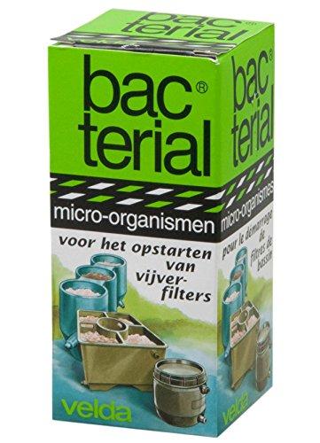 Velda 122605 Bakterienkulturen zum Starten von Teichfiltern, Bacterial Filterstart, 20 ml