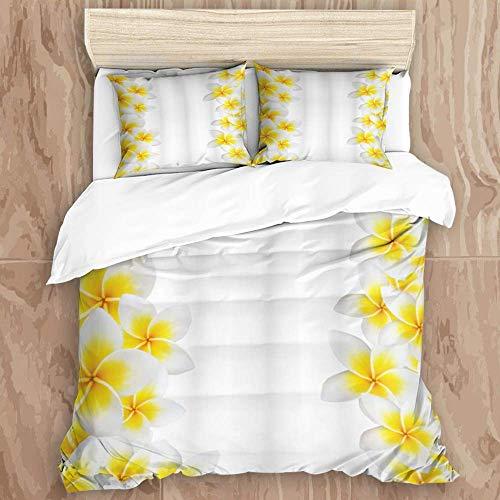Ensemble de housse de couette 3 pièces et 2 taies d'oreiller, entretien facile, fleur de frangipanier hawaïen, jardin de nature exotique, cadre de fleur de frangipanier, image de relaxation, housse de