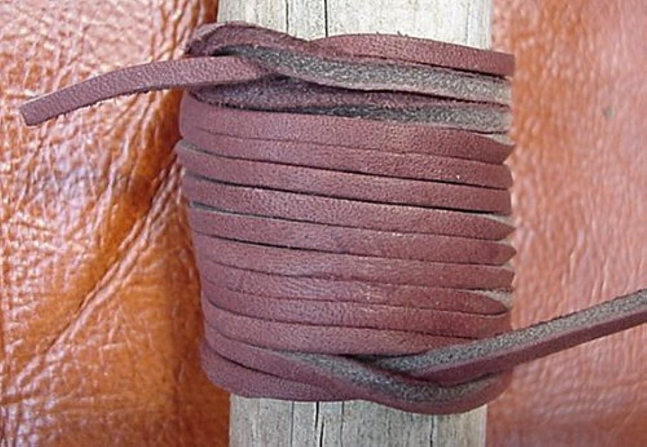 Lace Lacing Leather Topgrain Latigo Chocolate Brown 10 Feet Long 1 Piece