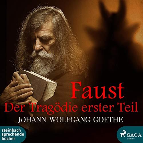 Couverture de Faust - Der Tragödie erster Teil