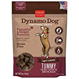 Cloud Star Dynamo Dog Functional Treats - Tummy - Pumpkin & Ginger - 5 oz (20210)