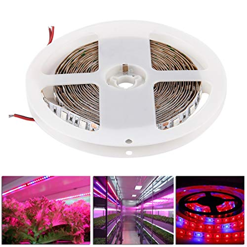 Tanxinxing 300 LED SMD 5050 Une Plante hydroponique pour Serre de l'aquarium 4: 1 élève la lumière de la Corde du Panneau, 60 LED/m, Longueur: 5 m, CC 12V