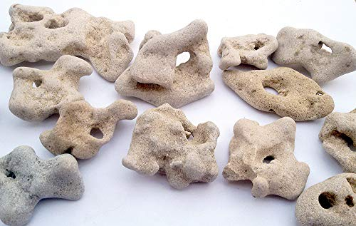 Galilee Gifts 1 Natural Hag Stone Buy Online In Canada At Desertcart Stone world canada is proud to feature coral stone from the caribbean. desertcart