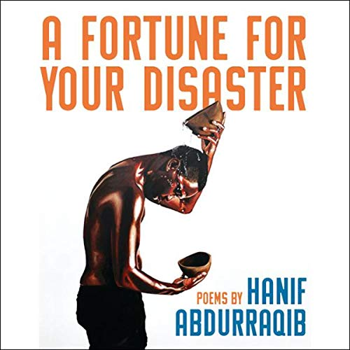 Couverture de A Fortune for Your Disaster