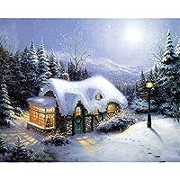 明るい冬のイグルーDIY5Dダイヤモンドペインティングキット大人と子供が家の壁の装飾のためのダイヤモンドモザイク工芸品(40x50cmスクエアダイヤモンド)