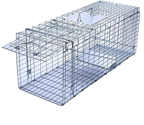 Trapro Large Collapsible Humane Live Animal Cage Trap for Raccoon, Opossum, Stray Cat, Rabbit,...