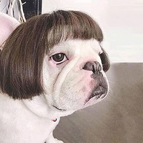 AHURGND Linda peluca de mascotas, peluca de perros de mascotas Rubia cola de caballo, perro gato traje peluca, cosplay para vacaciones Halloween Navidad Cosplay Party Sintético Headwear para perros pe