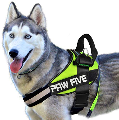 Paw Five CORE-1 No-Pull Reflective Dog Harness with Built-in Waste Bag Dispenser Adjustable Padded Control for Medium and Large Dogs, Check Sizing Chart Before Ordering (Medium, Leaf Green)