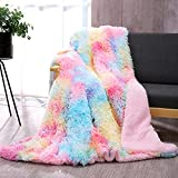 DANGTOP Luxury Faux Fur Throw Blanket, Soft Tie-dye Decoration Blanket, Fluffy Blankets, Lightweight Luxurious Cozy Warm Fluffy Plush Sherpa for Bed Couch Living Room (Rainbow, 59x79 inches)