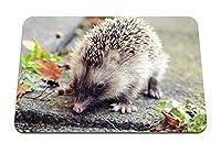 22cmx18cm マウスパッド (ハリネズミの葉いばら) パターンカスタムの マウスパッド