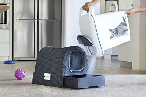 Curver Katzentoilette Sicherheit anthrazit - 8