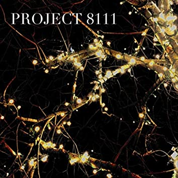 Project 8111
