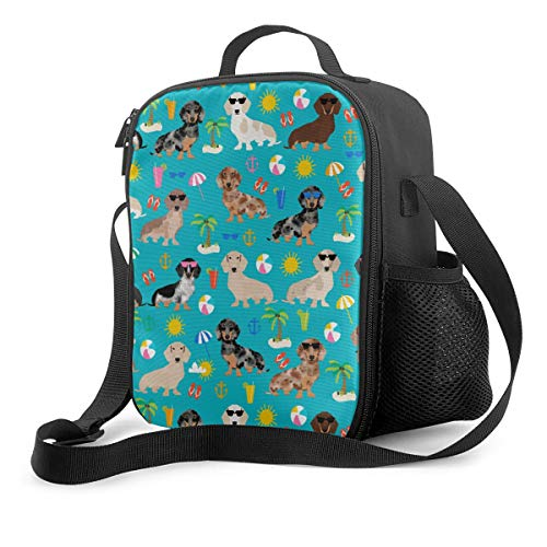 Dachshund Dog Men Women Insulated Lunch BagReusable Tote Lunch Box with Water Bottle Holder and Adjustable Shoulder Strap for School Office Picnic