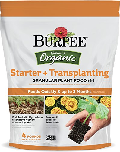 Burpee Organic Starter and Transplanting Granular Plant Food