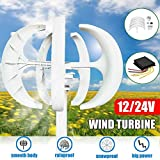 5000W Wind Turbines Generator, AC 12V 24V Wind Turbines Generator Lantern 5 Blades Motor Kit Vertical Axis for Home Hybrids Streetlight Electromagnetic,24v