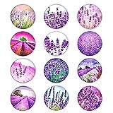 Magneti per Frigorifero in Cristallo [ 12pcs ] Cabochons in vetro decorativo Magneti in vetro per desktop fai-da-te Bacheca, lavagna bianca, frigorifero, lavagna magnetica