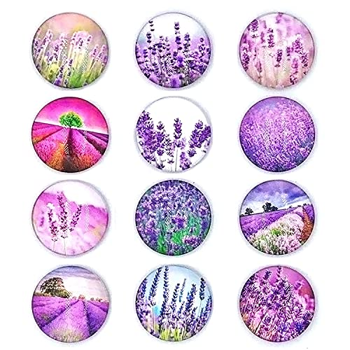 12 Imanes De Cristal para Nevera, cabujones de Cristal Decorativos, imanes de Cristal para Bricolaje, Pizarra, Nevera, Pizarra magnética