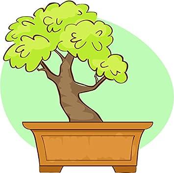 Amazon Com Pretty Simple Bonsai Tree Cartoon Icon Vinyl Sticker 2 Wide Bonsai Tree Green 1 Automotive