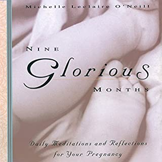 Nine Glorious Months audiobook cover art