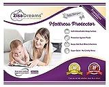 "Zisa Dreams - Mattress & Sofa Bed Sleeper Protector | Total Safety from Spillage & Dust Mite, Hypoallergenic, Waterproof, Premium 100% Jersey Cotton Top, Queen Size (60x80), 6"" Depth, White"