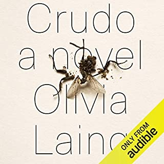 Crudo audiobook cover art