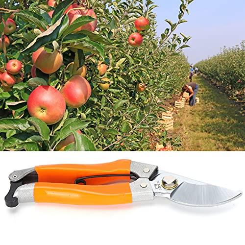 Faceuer Tijeras de podar, Tijeras de jardinería manuales ergonómicas para jardinería doméstica para poda de árboles