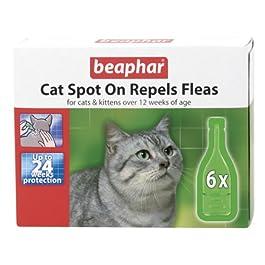 Beaphar Cat kitten spot on flea drops kills fleas