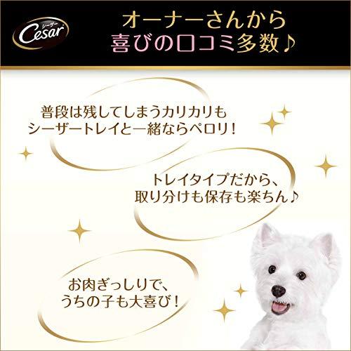 シーザーシニア犬用11歳からの絹ささみ100g×24個(まとめ買い)[ドッグフード・ウェット]