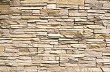GREAT ART XXL Poster – Noble Stone Wall – Wandbild Dekoration moderne Wandverkleidung Steinoptik Schiefergestein Mauer Sandstein Naturstein Wandposter Fotoposter Wanddeko (140 x 100 cm)