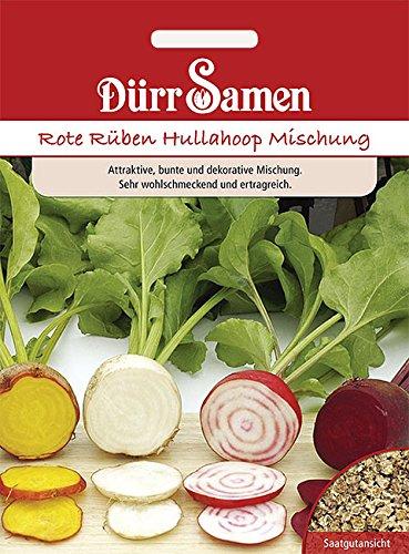 Dürr-Samen - Rote Rüben Hullahoop Mischung