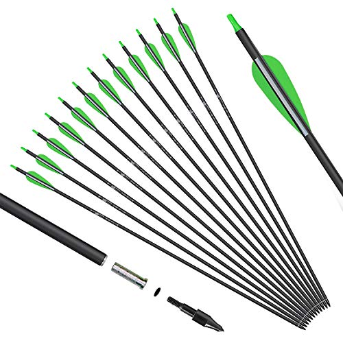 KESHES Archery Carbon Arrows for Compound & Recurve Bows - 30 inch Youth Kids and Adult Target Practice Bow Arrow - Removable Nock & Tips Points (12 Pack)