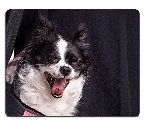 luxlady Gaming Mousepad accesorios Perro Chihuahua Small Blanco y Negro Perro Chihuahua de llevar por su propietario en una bolsa de perro imagen ID 43437865