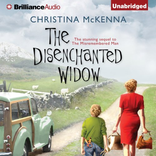 The Disenchanted Widow cover art