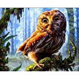 Pintura por números,Jungle brown animal owl Pintura por Números para Adultos Bricolaje Lienzo Preimpreso Pintura al óleo Arte Decoración del Hogar Reducir la Ansiedad,40cmX50cm(sin marco).