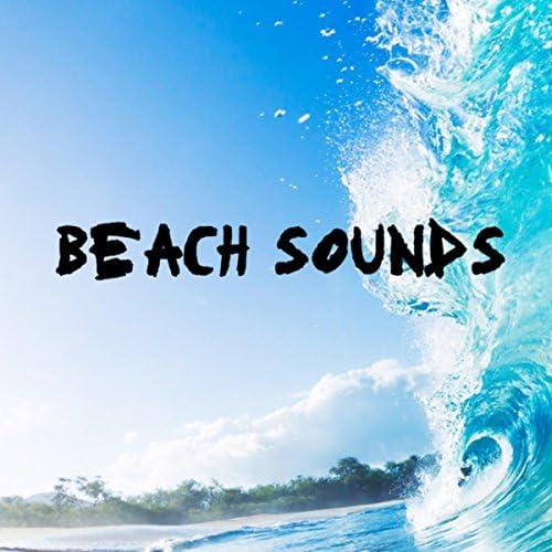 Calm Ocean Sounds, Ocean Beach Waves & Calming Rainforest Sounds