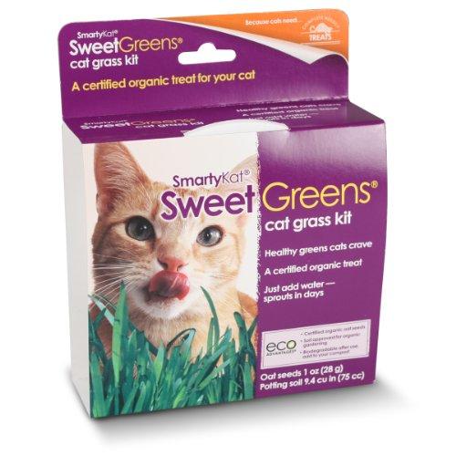 SmartyKat, Sweet Greens, Cat Grass Seed Kit, Cat Treats, 100% Certified Organic, Natural, Oat Seeds, 1 Oz