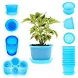 DeElf 10 Sets 6 Inch Plastic Plant Pot Round Drainage Flower Pot with Saucer Tray, Glow in The Dark Bulk Planters for Indoor Outdoor Flowers, Succulents, Orchids, Herbs, Cactus, Blue, Glow Blue
