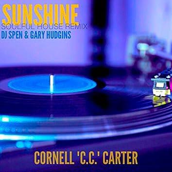 Sunshine (DJ Spen & Gary Hudgins Soulful House Remix) - Single