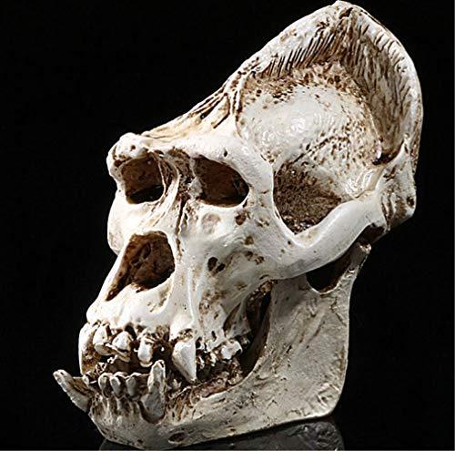 Wadyf Adornos Calavera Calabera Decorativas Decorativos Decoracion Resina Regalo Resistente Calidad Bonita Increíble Útil Genial Simulation Animal Skull Resin Personality Trim
