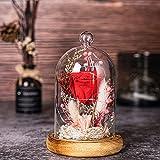 Rosa Eterna, AOKKR Flores Preservadas con Luz LED, Rosa Roja con Caja de Regalo en Cúpula de Vidrio con Una Cinta y Una Tarjeta de Deseos, Regalo para Mujer de Aniversario Regalos para Madres