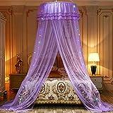 Hankyky - Mosquitera para cama de matrimonio, diseño romántico con cúpula redonda y doble volantes, para cama de matrimonio King Queen morado morado