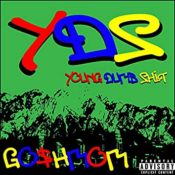 Y.D.S (Young Dumb Shit)