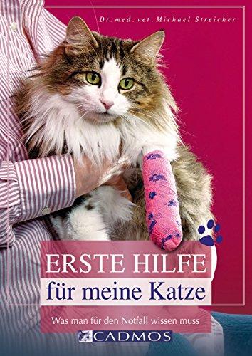 Erste Hilfe für meine Katze: Was man für den Notfall wissen muss (Katzen)